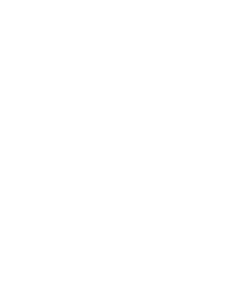 WhirliDogs
